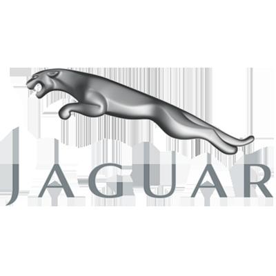 Exoparts: Jaguar logo (image)